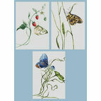 Set Of 3 Butterfly Cross Stitch Kits - Aroma Of Summer, Emotion & Spirit Of Summer