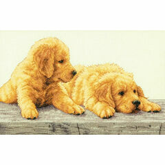 Golden Retriever Puppies Cross Stitch Kit