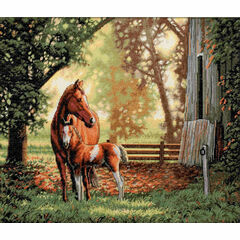 Mare & Foal Cross Stitch Kit