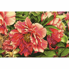 Coral Peonies Cross Stitch Kit