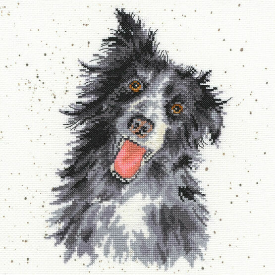 Hannah Dale Collie Cross Stitch Kit