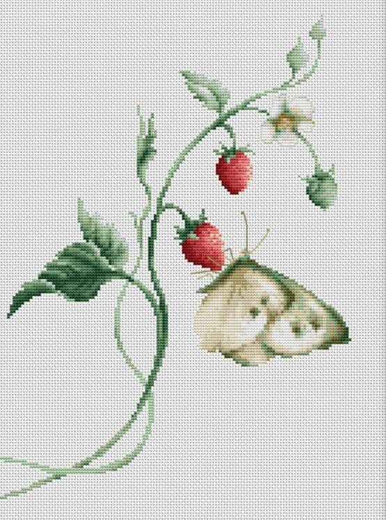 Aroma Of Summer Cross Stitch Kit